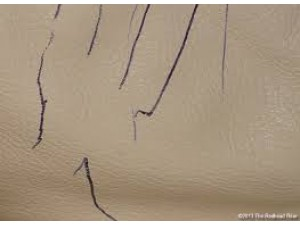 How To Remove Ink From Leather >> Northern Ireland How Do I Remove Ink Stains From Leather